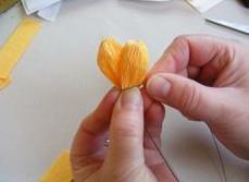 Buộc cánh hoa và nhị hoa lại.