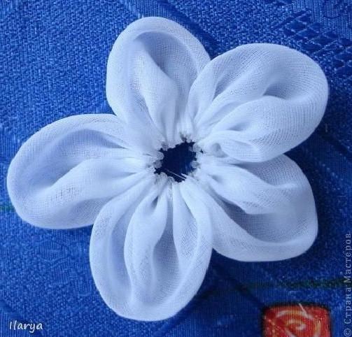 ghép cánh hoa lại với nhau ta được 1 bông hoa như hình trên