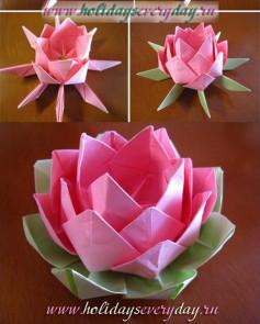 Cách làm bông sen giấy cực dễ và nhanh chóng mà không kém phần thanh tao, đẹp đẽ