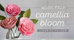 Hướng dẫn cách làm bông hồng bằng giấy xốp