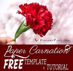 Hướng dẫn cách làm hoa cẩm chướng giấy siêu đẹp mà đơn giản