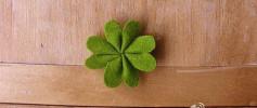 Hướng dẫn làm lá của cây cỏ bốn lá đơn giản từ vải dạ.